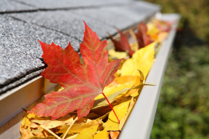 Fall Cleaning is Not Just for the Outside of Your Home