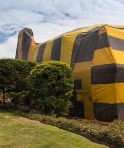 WARNING: Tenting for Termites Can Leave You Vulnerable